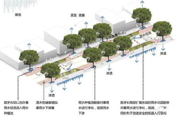 城市雨水问题解决的景观学方法